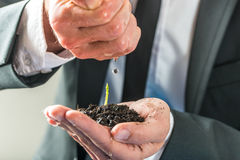 Businessman pouring water over a small green plant Royalty Free Stock Photos
