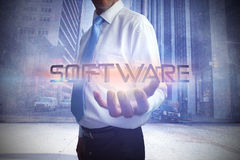 Businessman presenting the word software Stock Photo