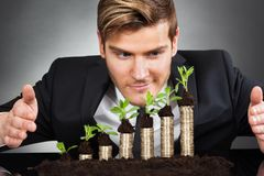 Businessman protecting coins in saplings Stock Photos