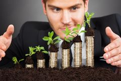 Businessman Protecting Coins In Saplings Stock Images