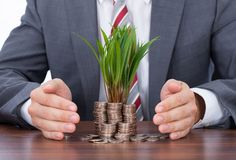 Businessman Protecting Saplings On Coin Stacks Royalty Free Stock Image
