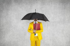 Businessman protects the data, is under the umbrella. Insurance agent Royalty Free Stock Images