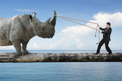 Businessman pulling rope against rhinoceros balancing on tree tr. Businessman pulling rope against a huge rhinoceros balancing on tree trunk, with blue sky sea Royalty Free Stock Photo