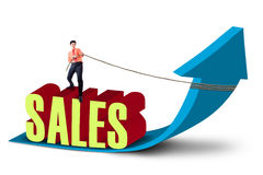 Businessman pull sales profit arrow sign. Businessman is pulling sales arrow sign on white background Royalty Free Stock Photos