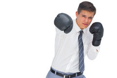 Businessman punching with black boxing gloves Royalty Free Stock Photo