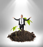 Businessman raising his hands to heaven stands on huge increased green sprout growing from the ground Stock Images