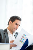 Businessman reading an analytical report Royalty Free Stock Image