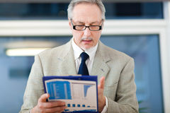 Businessman reading some documents Royalty Free Stock Images