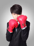 Businessman ready punching with boxing gloves. Successful businessman ready punching with boxing gloves isolated on gray background,  Business competition Stock Photos
