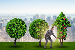 The businessman in recyling sustainable business concept Stock Photography