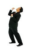 Businessman rejoice. Businessman in rejoice position with Isolated Portrait Royalty Free Stock Photo