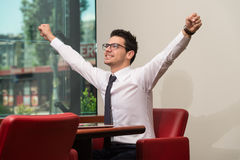 Businessman Rejoicing For His Success Stock Images