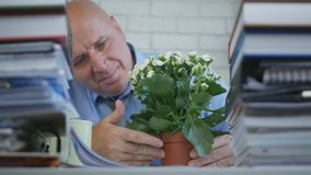 Businessman Relax Looking To a Flower in Office Room stock photos