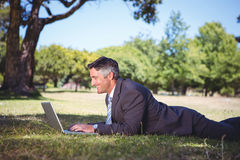 Businessman relaxing in the park Stock Photos