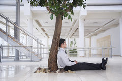 Businessman Relaxing Under Tree In Office Royalty Free Stock Images