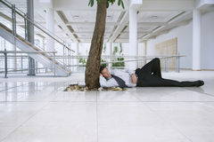 Businessman Resting Under Tree In Office Stock Photos