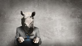 Rhino dressed in business suit . Mixed media stock photos