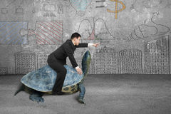 Businessman riding turtle and indicating with finger in concrete Stock Images