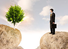 Businessman on rock mountain with a tree Stock Photo