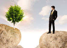 Businessman on rock mountain with a tree Royalty Free Stock Image