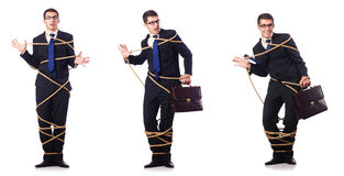 The businessman roped isolated on white background Royalty Free Stock Image