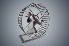 The businessman running on hamster wheel Stock Photography