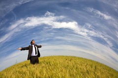 Businessman in rural field Stock Photography