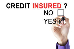 Businessman`s hand is approving credit insurer Stock Images