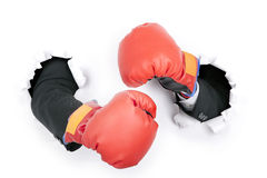 Businessman's hand in fight position Stock Images