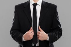 Businessman's torso in suit Stock Photo