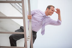 Businessman searching for opportunity Stock Photo