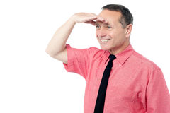 Businessman searching for something Stock Photography
