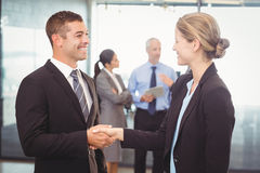 Businessman shaking hands with businesswoman Royalty Free Stock Photo