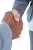 Businessman shaking hands with a co worker Stock Image