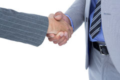 Businessman shaking hands with a co worker Stock Photos