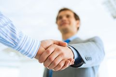Businessman shaking hands with a colleague Stock Photo