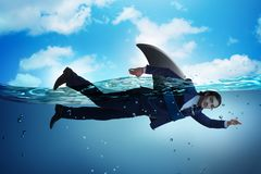 The businessman with shark fin swimming in water. Businessman with shark fin swimming in water royalty free stock images