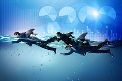 The businessman with shark fin swimming in water. Businessman with shark fin swimming in water stock photo