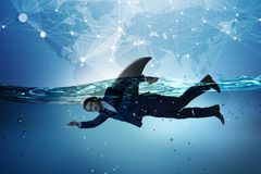 The businessman with shark fin swimming in water. Businessman with shark fin swimming in water royalty free stock photography