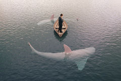 Businessman and sharks. Businessman thinking and sharks around him Stock Images