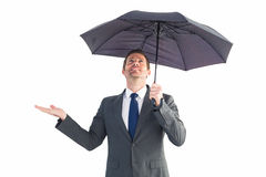 Businessman sheltering under black umbrella Stock Image