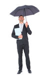 Businessman sheltering under umbrella holding file Stock Photos