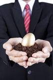 Businessman showing golden egg and soil Stock Photos