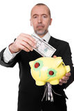 Businessman shredding dollars in a piggy bank Stock Image