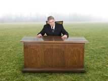 Businessman Sits At Office Desk in Field or Meadow Stock Images