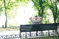Businessman sitting on the bench. Back view portrait of a businessman sitting on the bench in park Stock Photo