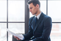Businessman sitting in office reading contract documents Royalty Free Stock Image