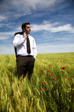Businessman in a spring field Stock Photos