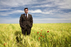 Businessman in a spring field Stock Images