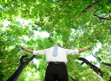 Businessman stand in the green forest Stock Images